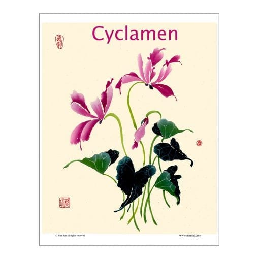 Cyclamen Brush Painting Lesson by Nan Rae
