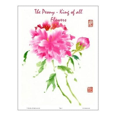 Peony Brush Painting Class Lesson by Nan Rae