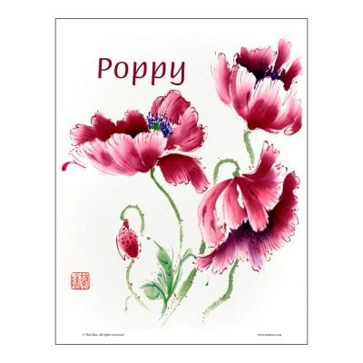 Poppy Brush Painting Class Lesson by Nan Rae