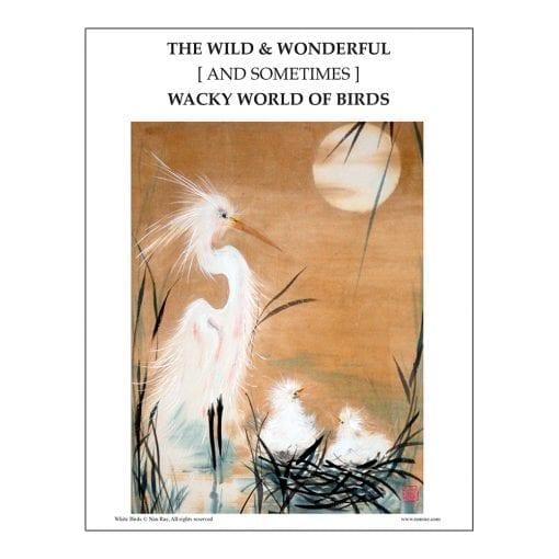 White Birds Class Lesson by Nan Rae