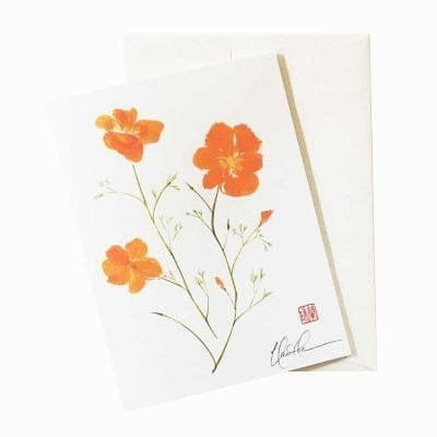 20-46 California Poppy by Nan Rae