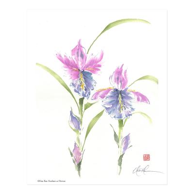 L2625 Feathers as Flowers Print © Nan Rae
