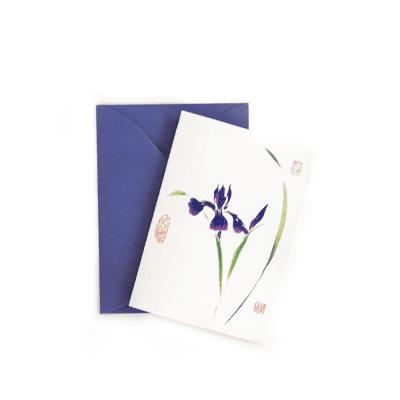 Japanese Iris Gift Enclosure © Nan Rae