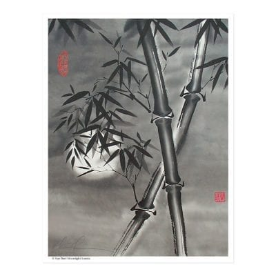 Moonlight Sonata Print by Nan Rae