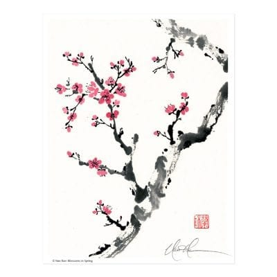 Blossoms in Spring Print by Nan Rae