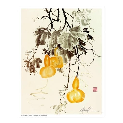 Gourds Glisten in the Moonlight Print by Nan Rae