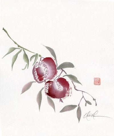 An Original Pomegranate painting by Nan Rae