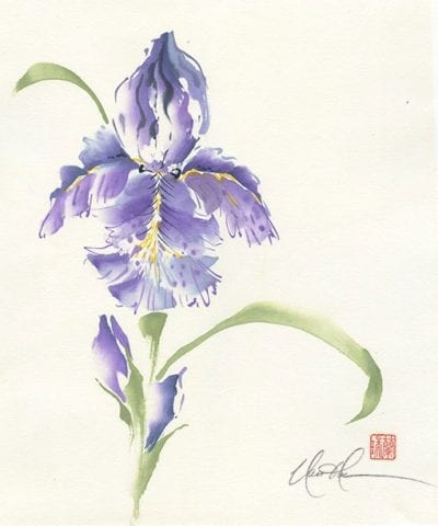 Bearded Iris Original Brush painting