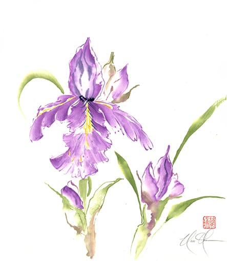 Iris artwork