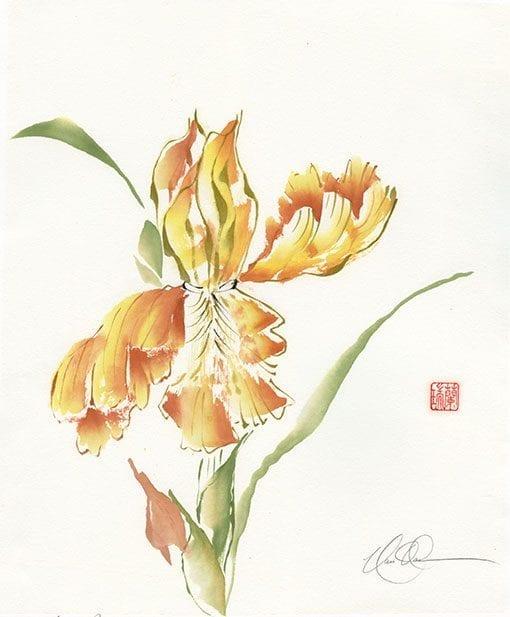 Bearded Iris painting